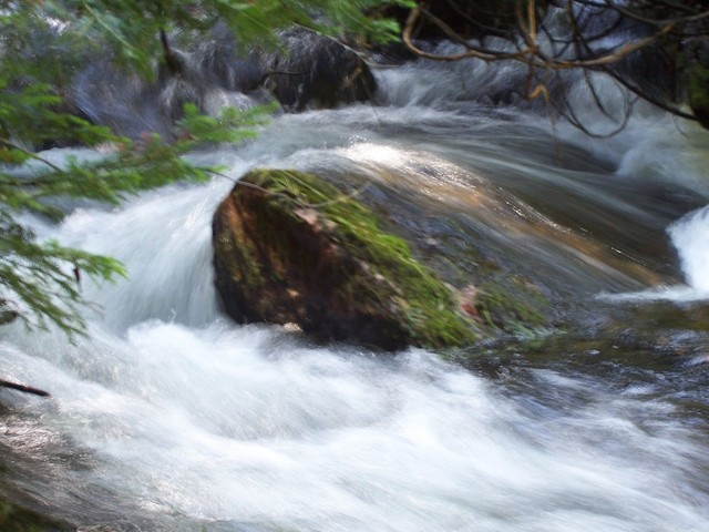 Permakültür'ün Temel Kavramları 2: Doğayla Mücadele mi, Doğayla Uyumlu Yaşam mı?
