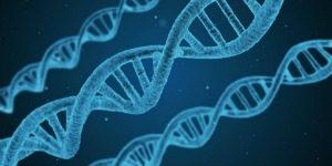 genetik-mirasi-degistirebilirsiniz-i